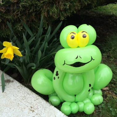 Frogs and Spring