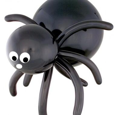 Medium Spider