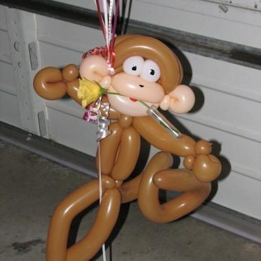 Valentines Day Monkey